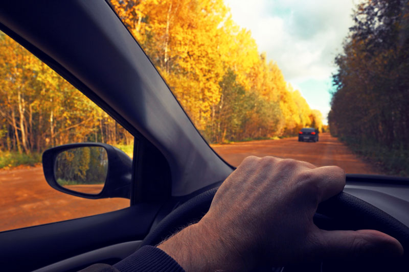 Stay Safe on the Road with These Autumn Driving Tips